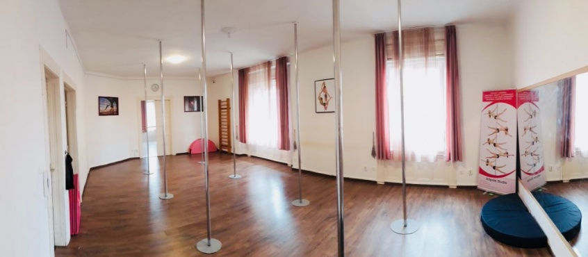 Artpole Studio